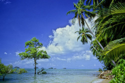 Thaïlande : les îles du sud aux environs de Ko Chang